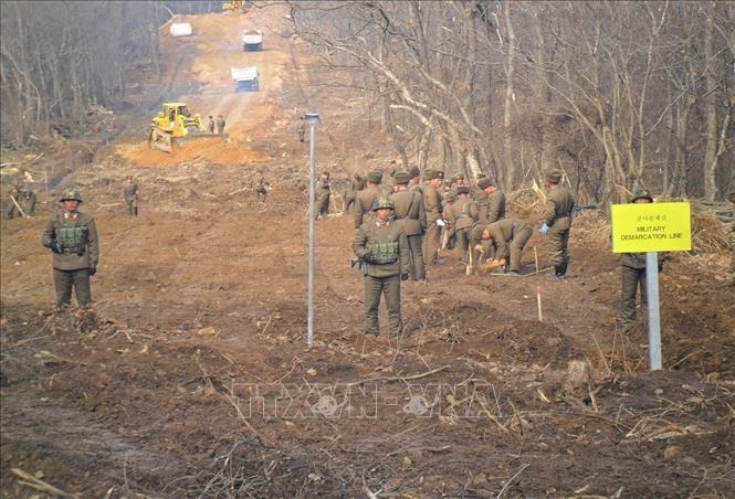 สหประชาชาติอนุญาตให้เปิดถนนสันติภาพในเขตปลอดทหารระหว่าง 2 ภาคเกาหลี - ảnh 1