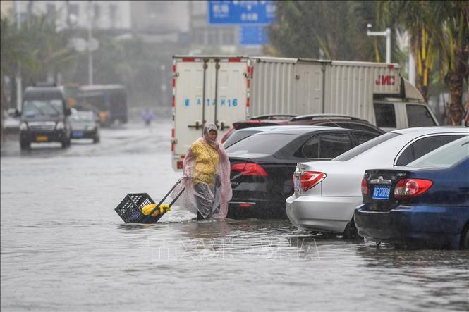 พายุโซนร้อนวิภาพัดถล่มมณฑลกวางตุ้ง ประเทศจีน - ảnh 1